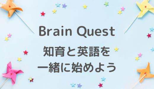 Brain Questブレインクエストカードで英語も知育も?おすすめ英語教材!