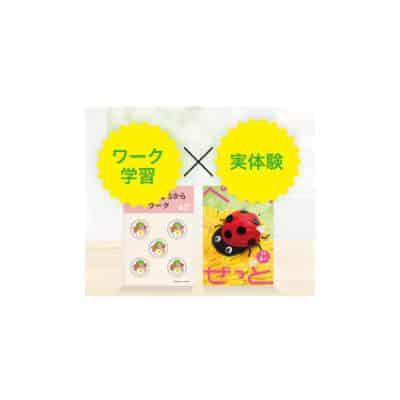 Z会幼児コース icon