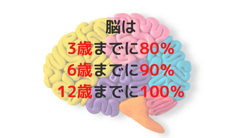 幼児脳の発達